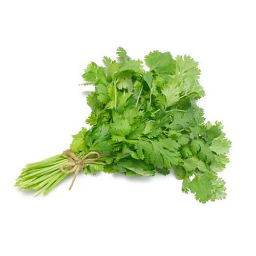 Organic Coriander leaves - ধনেপাতা