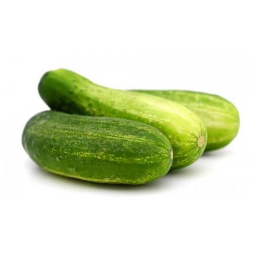 Organic Cucumber - শসা
