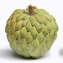 Custard Apple -  আতা