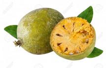 Bael Fruits(বেল)