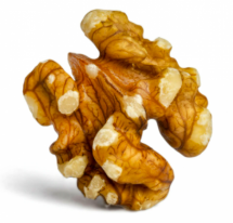 Organic Walnut - ওয়ালনাট