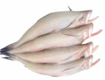 Lote Fish  - লটে মাছ
