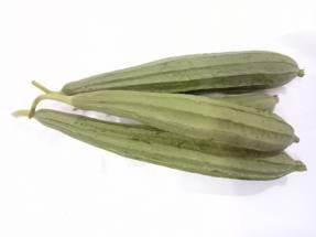 Organic Ridge Gourd