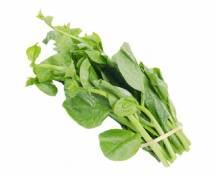 Organic Malabar Spinach -পুঁইশাক