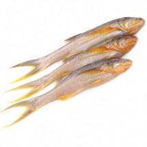 Topse - তোপসে মাছ